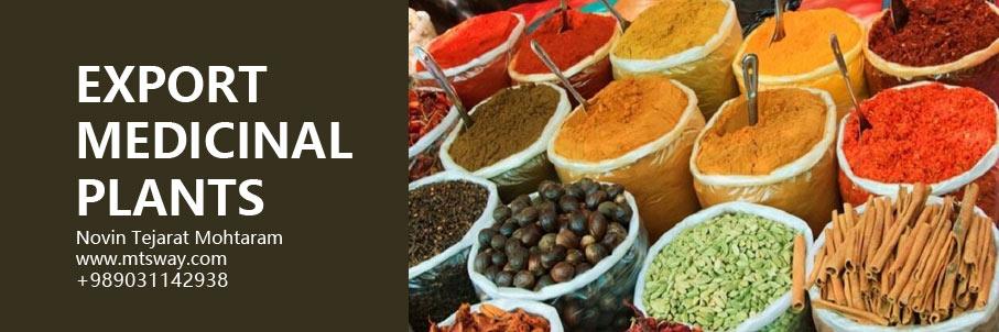 آموزش صادرات گیاهان دارویی